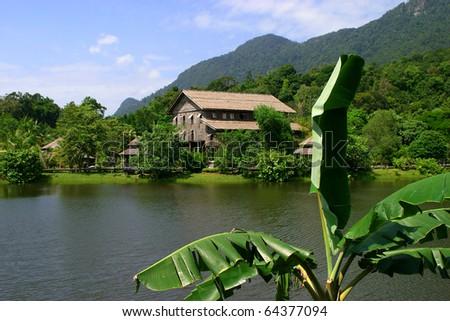 Malaysia Borneo Sabah Kinabalu, Kinabalu Park - UNESCO World Heritage site - stock photo