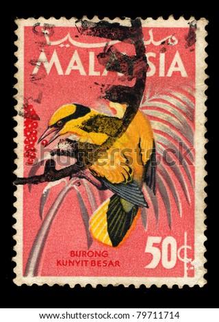 MALAYSIA - CIRCA 1969: A stamp printed in Malaysia shows Black-naped Oriole - Oriolus chinensis, circa 1969 - stock photo