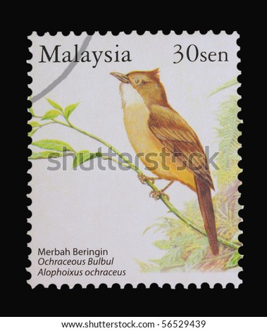 MALAYSIA - CIRCA 1980s: A stamp printed in Malaysia showing Ochraceous Bulbul, circa 1980s