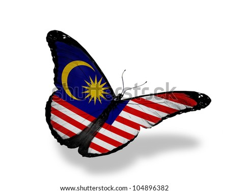 Malaysian flag butterfly flying, isolated on white background - stock photo