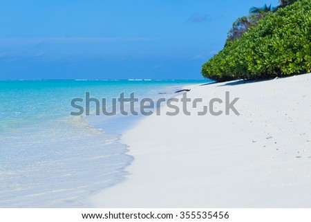 Maldives. Beach and ocean  view. White sand. Nobody. Blue clean water in ocean.