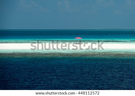maldives tropical paradise beach crystal water white sand beach coconut tree island panorama