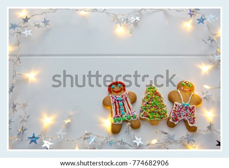 Male and Female Christmas Cookies and fir tree with garland.