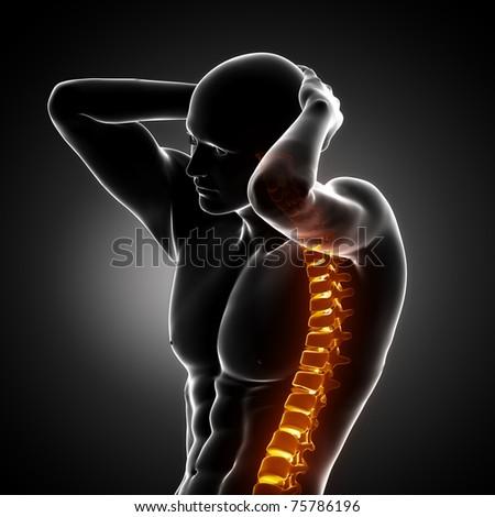 Male Body Backbone Scan - stock photo