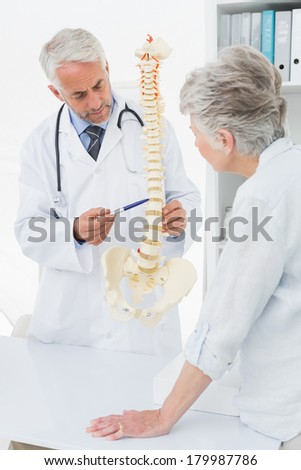 Male doctor explaining the spine to senior patient in medical office - stock photo