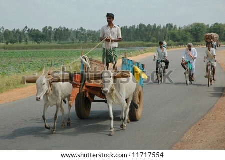 Male farmer driving ox cart in Southern India through rural landscape - stock photo