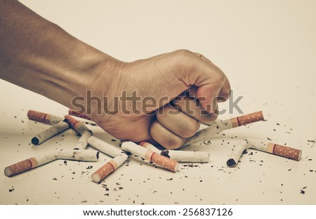 male hand destroying cigarettes - stop smoking concept - world no tobacco day - stock photo