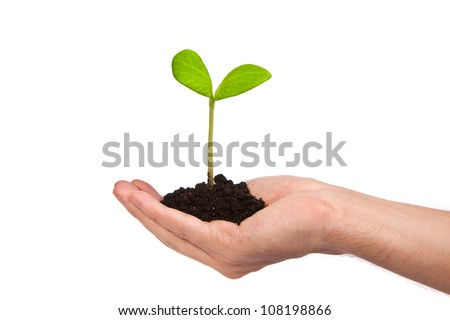 Male hand hold a small sprout and an earth handful isolated on a white background