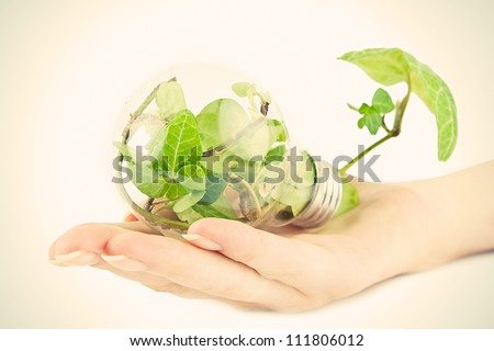 Male hand holding a light bulb with fresh green leaves inside.ecology concept - stock photo