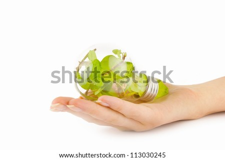 Male hand holding a light bulb with fresh green leaves inside.ecology concept