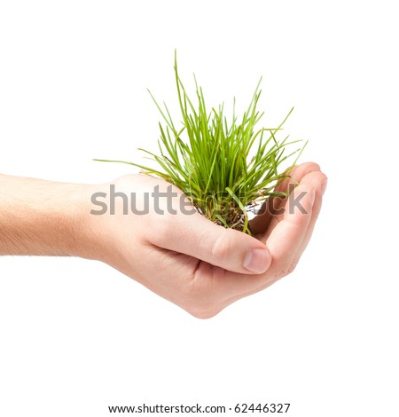 Male hand holding green grass isolated on white - stock photo