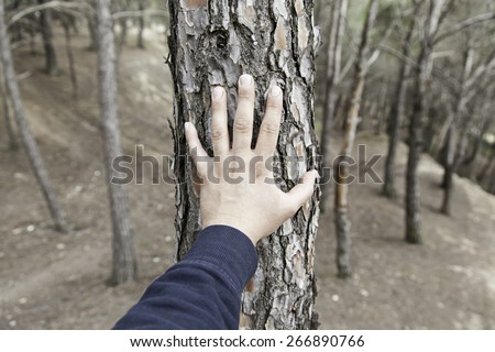 Male hand touching a tree, detail of love for nature, environment - stock photo