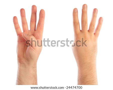 Male hands counting number 4. See also 24467833, 24467836, 24474706, 24474703