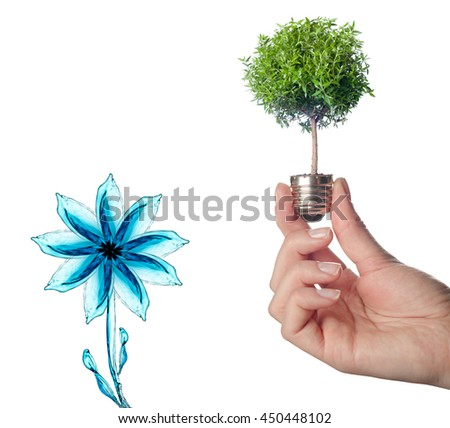 Male hands holding tree growing out of electric light bulb. Eco green energy saving in the future concept . A tree is growing inside a light bulb. - stock photo