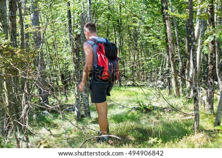 Male hiker hiking trough forest, Rear view
