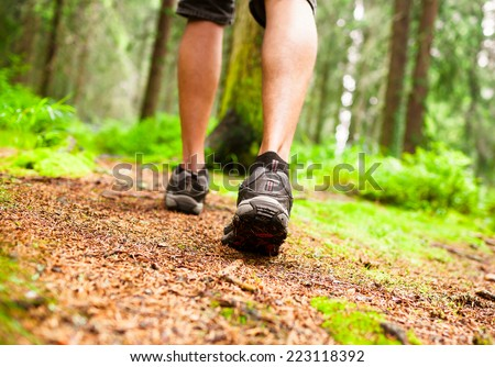 Male hiker walking through the forest - stock photo