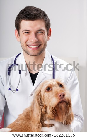 Male vet and pretty dog in surgery - stock photo