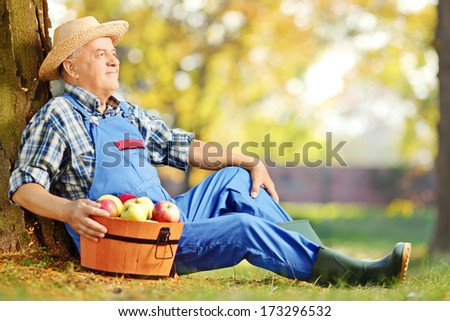 Male worker in dungarees with basket of harvested apples sitting in orchard - stock photo