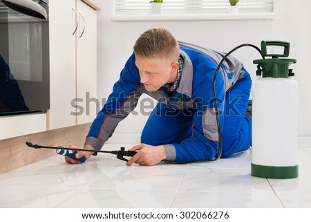 Male Worker Kneeling On Floor And Spraying Pesticide On Wooden Cabinet - stock photo