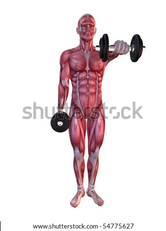 male workout - shoulder workout - stock photo