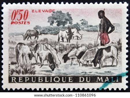 MALI - CIRCA 1961: A stamp printed in Mali shows Shepherd and Sheep, circa 1961 - stock photo