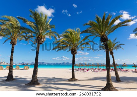 Mallorca Platja de Alcudia beach in Majorca Balearic islands - stock photo