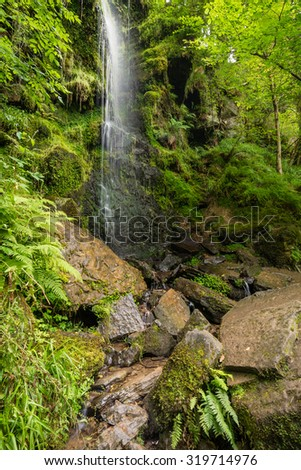 Mallyan Spout / Mallyan Spout waterfall at Goathland in the North York Moors National Park flows into West Beck which has created a deep gorge - stock photo