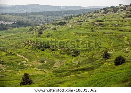 Maltese rocky landscape. - stock photo