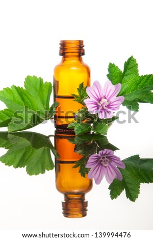 Malva Sylvestris with essential oil - stock photo