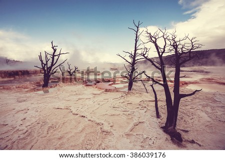 Mammoth Hot Springs in Yellowstone NP, USA - stock photo