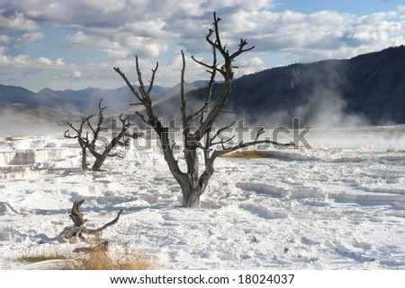 Mammoth hot springs, Yellowstone park - stock photo