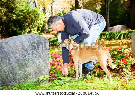 Man and dog in the cemetery - stock photo