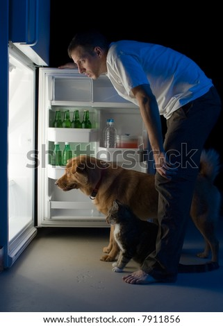 Man and his pets looking for food in the refrigerator - stock photo