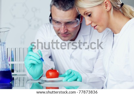 man and woman try to change tomato DNA - stock photo