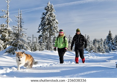 Man and woman young couple hikers hiking with akita dog on trekking in winter mountains. Trekkers walking on white powder snow in beautiful forest, outdoors landscape. Happiness and friendship. - stock photo