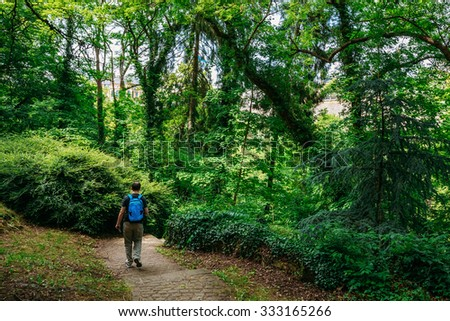 Man Backpacker Walking Along Stone Pathway Walkway Lane Path With Green Trees And Bushes In Park. Beautiful Alley In Summer Luxembourg Park