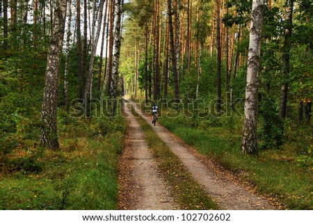 Man biking in a green forest in autumn - stock photo