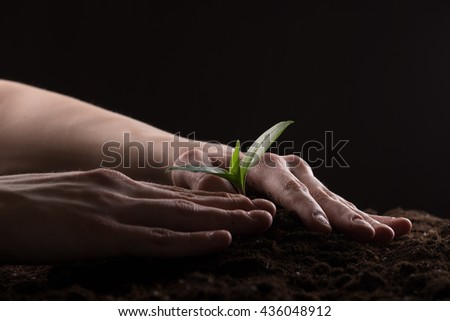 Man care about green young sprout growing in good brown soil. New life concept