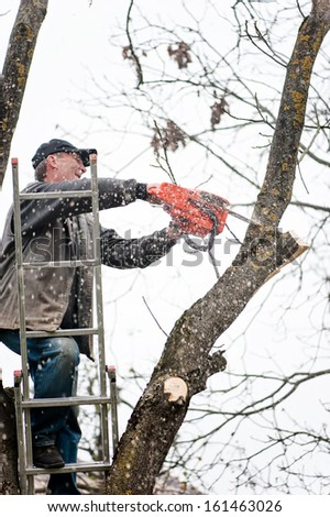 Man climbing a ladder and cutting fire wood with professional chainsaw - stock photo