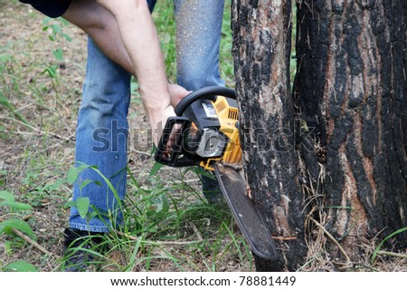 Man cuts tree with chainsaw - stock photo