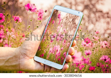 Man hand holding smartphone against on nature of flower garden background soft focus. - stock photo