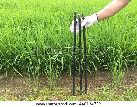 man hand in glove and electric fence pole in field rice