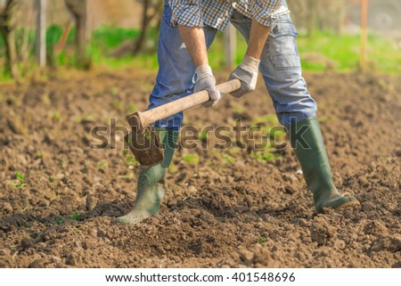 Man hoeing vegetable garden soil, new growth season on organic farm. - stock photo