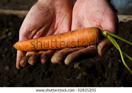 man holding a single carrot