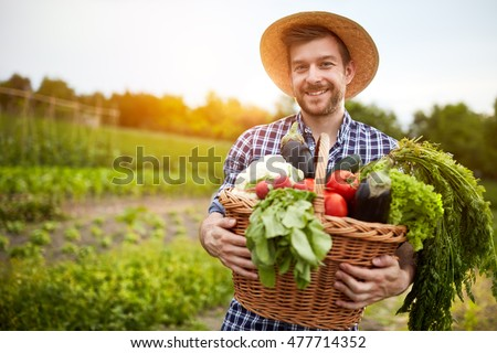 Man holding basket with healthy organic vegetables
