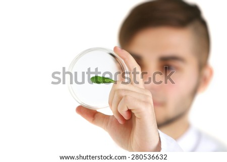 Man holding Petri dish with green leaf, close up - stock photo