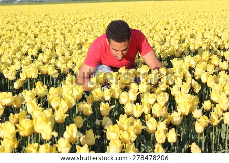 Man in a field - stock photo