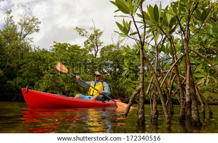 man in a red kayak through the mangroves in a tropical destination - stock photo