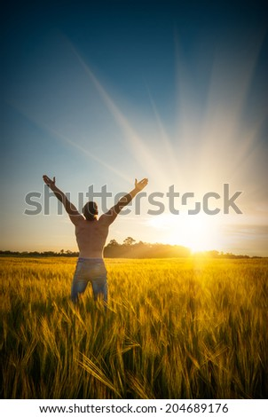 Man in a wheat field at sunset
