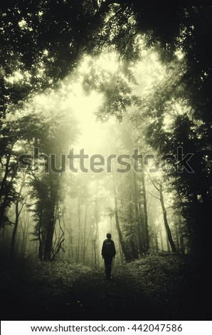 man in dark green forest